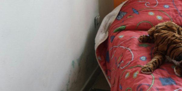 Casa che accoglie – Sassari – I danni causati da infiltrazioni idriche